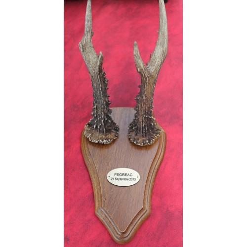 Plaque pour trophées en matériau acrylique adhésivé